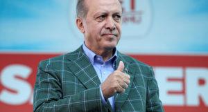 erdoğan stratejisi