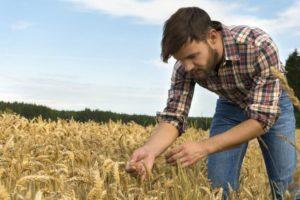 genç çiftçi hibe desteği sonuçları