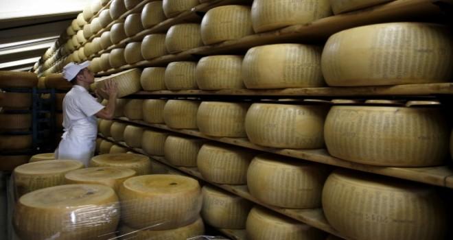 FAO Gıda Fiyat Endeksi Süt Ürünleri Nedeniyle Yükseldi