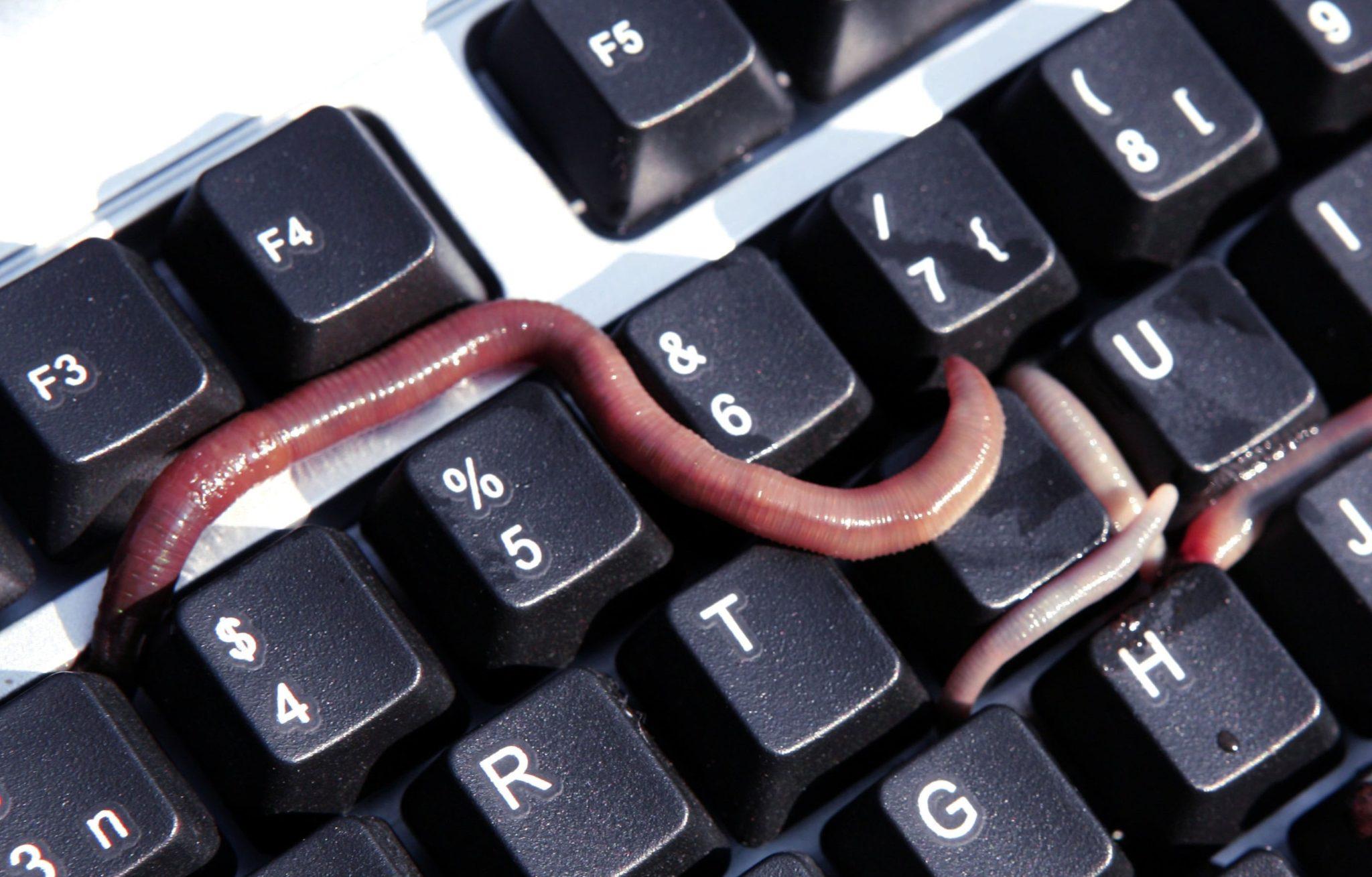 5 Ünlü Bilgisayar Virüsü