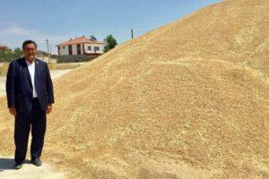 Buğdayda Tehlike Çanları Çalmaya Başladı