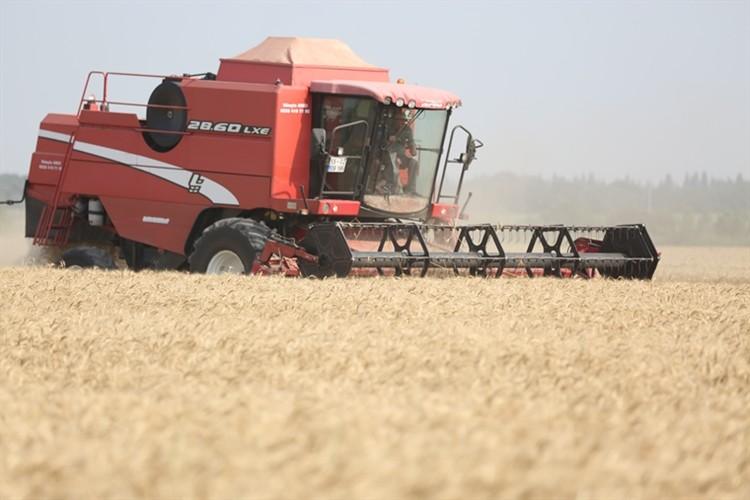 2018 yılı bitkisel üretim ikinci tahminleri açıklandı