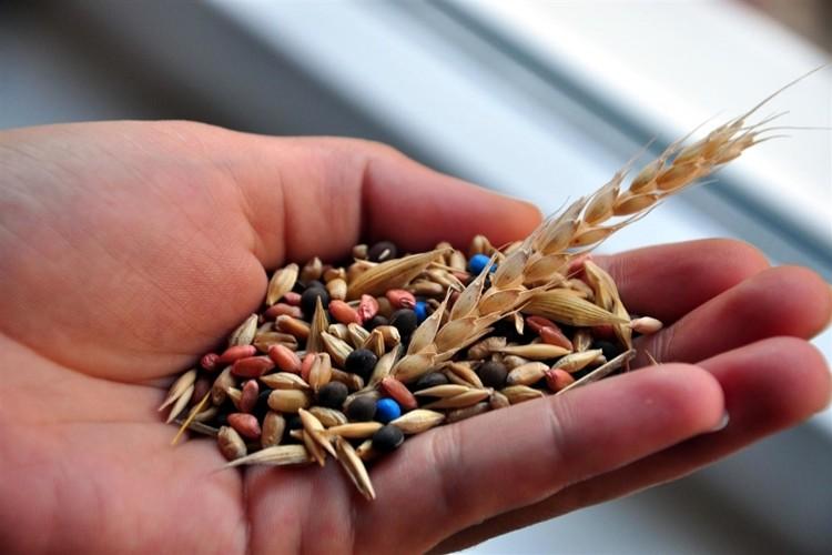 TODAB çiftçilere ve tohum bayilerine büyük hizmet sundu