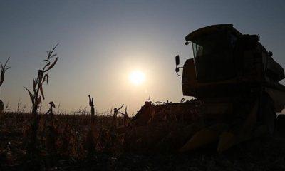 Tarımda makine satılmıyor, üretim durdurma gündemde