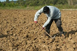 Antalya'da 5 Bin çiftçi tarımı terk etti