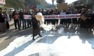 Süt Üreticilerinden Protesto! Sütleri Yola Döktüler