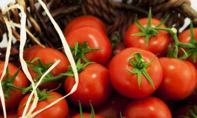Yaş Meyve Sebze ihracatında Yüzde 79 Artış