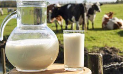 Toplanan inek Sütü Miktarı Yüzde 6,7 Azaldı