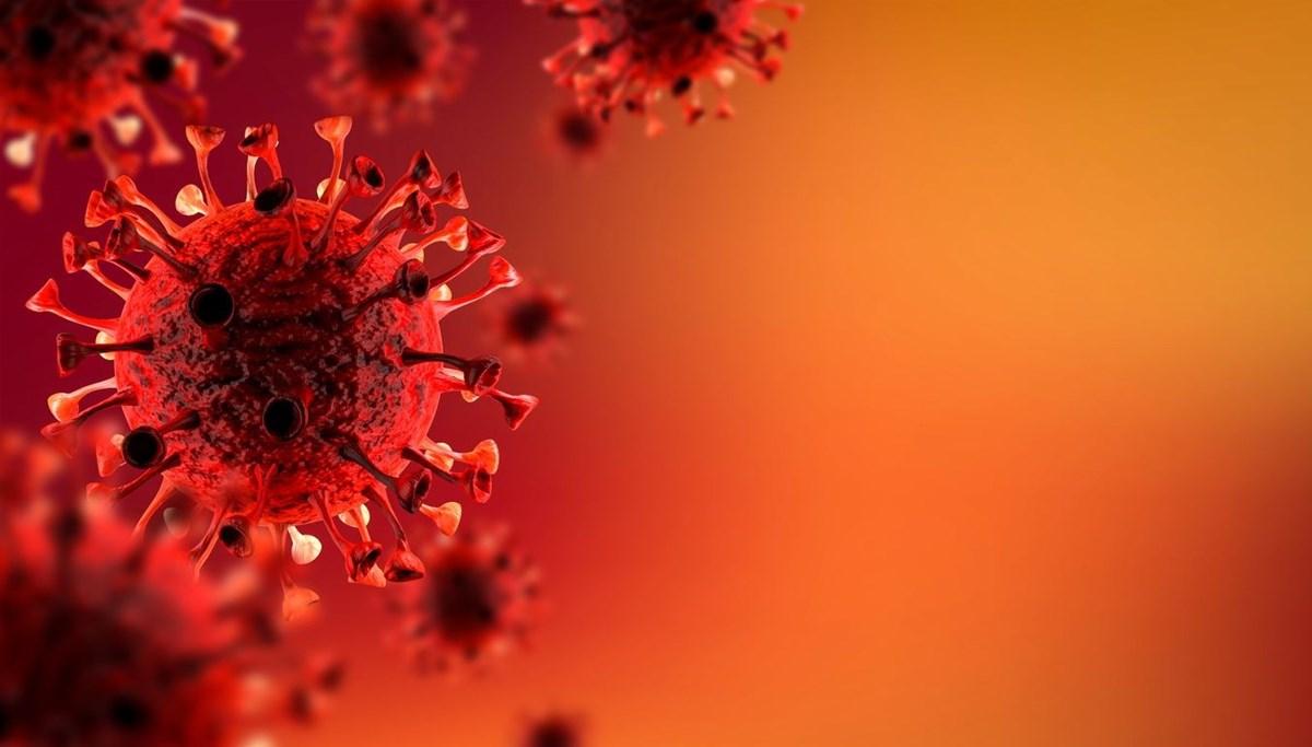 24 Eylül 2021 corona virüs tablosu: 221 can kaybı, 27 bin 197 yeni vaka